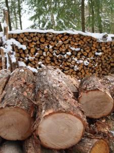 Brennholz noch nicht gespalten