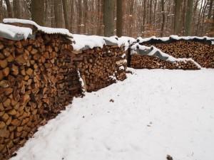 Luftige trockene Lagerung des Holzes
